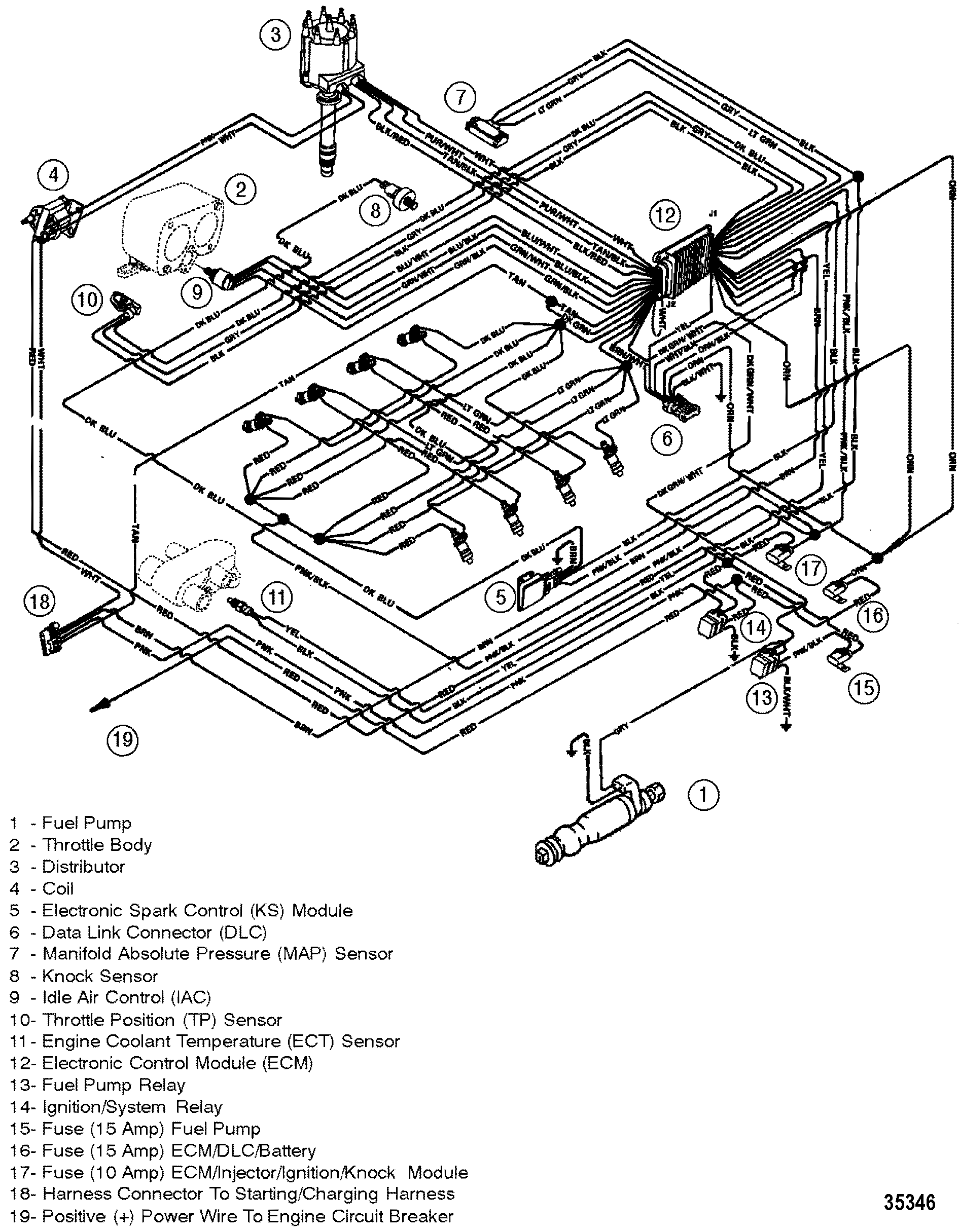 mercruiser 502 mpi wiring diagram - wiring diagram park ill-movement -  ill-movement.bubbleblog.it  bubbleblog