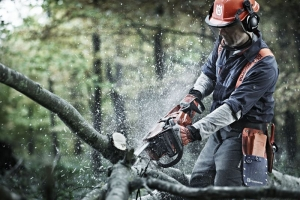 CHOOSING THE RIGHT CHAINSAW FOR YOUR CUTTING NEEDS